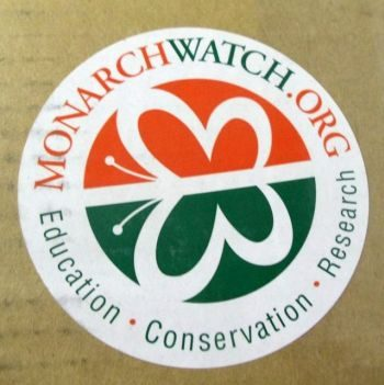 Monarch Watch Milkweed 4