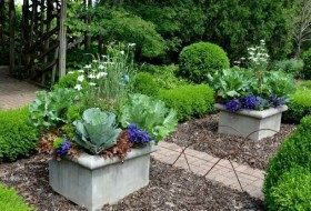 Beautiful edible and ornamental containers at Olbrich Gardens