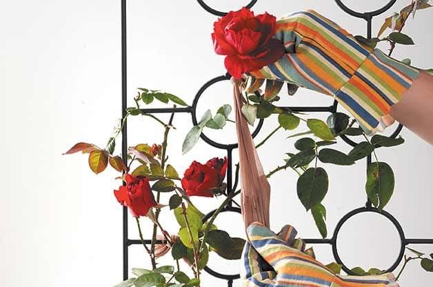recycled garden ideas