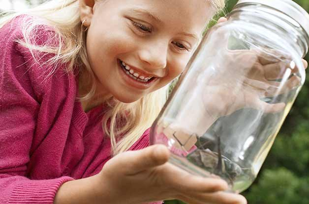 Recycled Garden Ideas: Going on a firefly or bug hunt? Keep critters in a mason jar with a piece of pantyhose held with a rubber band on the top so the insects can breathe.