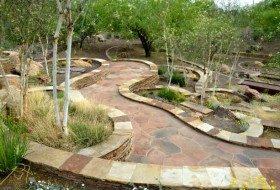 Scottsdale Xeriscape Demonstration Garden-016