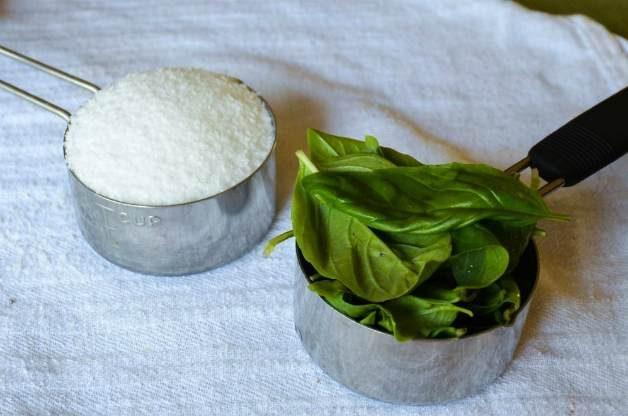 DIY Basil Salt 2