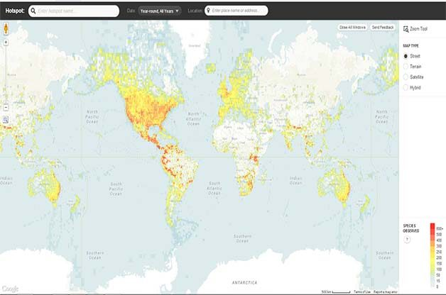 The eBird Hotspot Map is really easy to use!