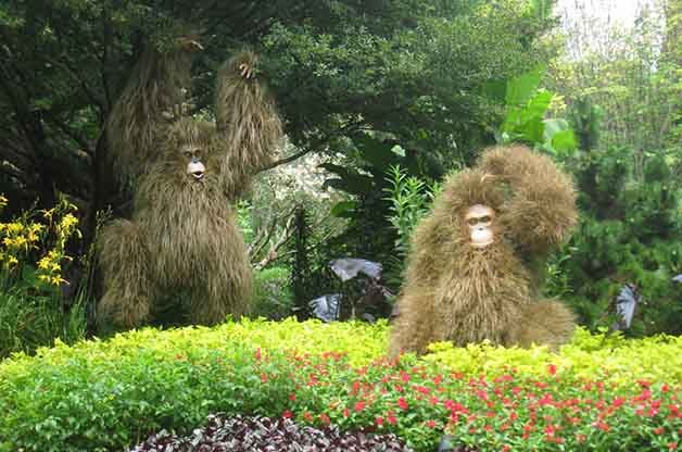 Orangutans are such cool species and the gardens did a great job with making these sculptures really look like the real thing!