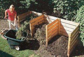 5 Common Mistakes In The Backyard Vegetable Garden