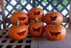 Cookie Cutter Butterfly Pumpkins
