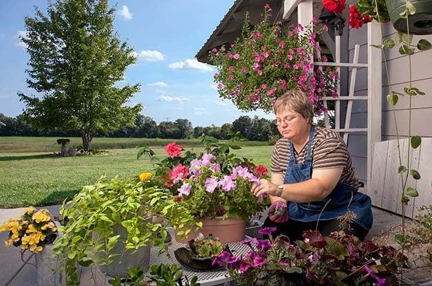 Healing Through Garden Therapy
