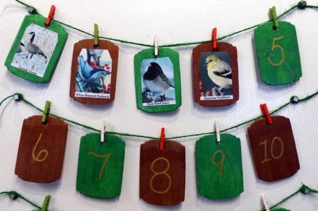 Backyard Birds DIY Christmas Countdown