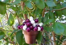 Berries Ornament