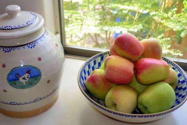 harvested apples