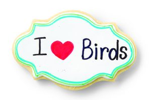 DIY Projects for the Home: Bird Cookies