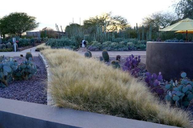 Great Gift Idea Botanical Garden Membership Birds And Blooms
