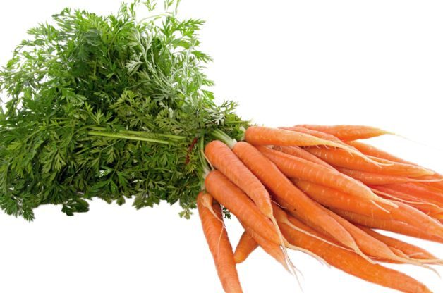 Fall Vegetables Carrots