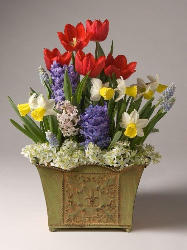 Awesome Garden Gift Ideas Potted Dutch Bulb Garden