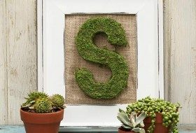 Moss Letter DIY Decor Project