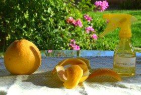 diy_grapefruit_cleaner