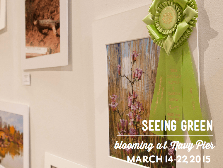 Enter The Photo Contest With The Chicago Flower Show Birds And