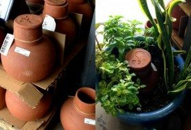 garden gift ideas ollas for potted plants