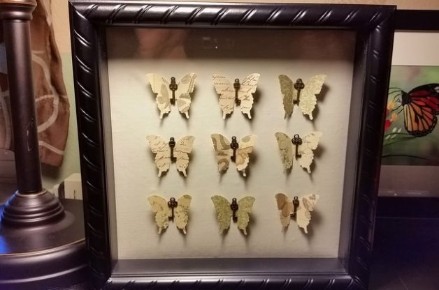 Flower and Butterfly Shadow Box Craft