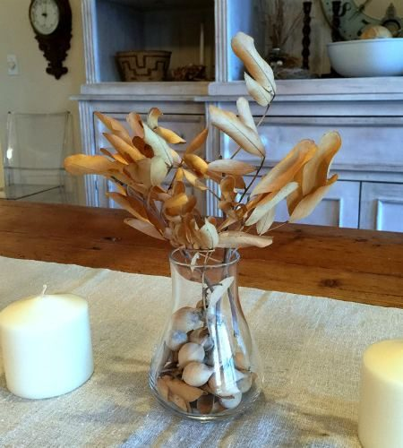 Home Decor Seed Pod Centerpiece 2