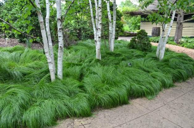 Olbrich Botanical Gardens 2