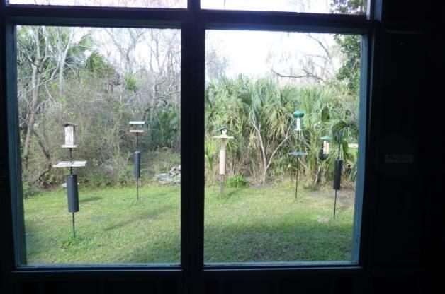 Felts Audubon Preserve Bird Blind