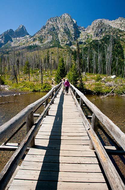 Birding Sites: Grand Teton