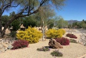 Colorful Southwestern Winter Landscape