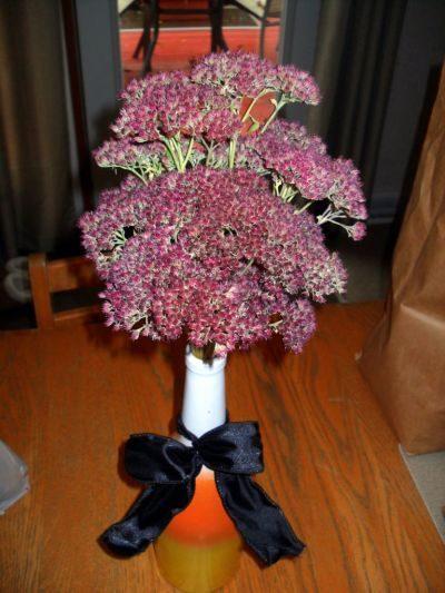 Flowers for Drying Sedum takyslaky