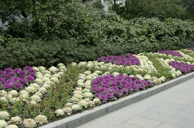 Hangzhou China garden