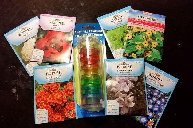 Rainbow Seed Tube DIY Garden Gift