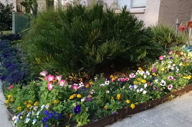 Small Space Gardening: More is More! | Flower Gardening