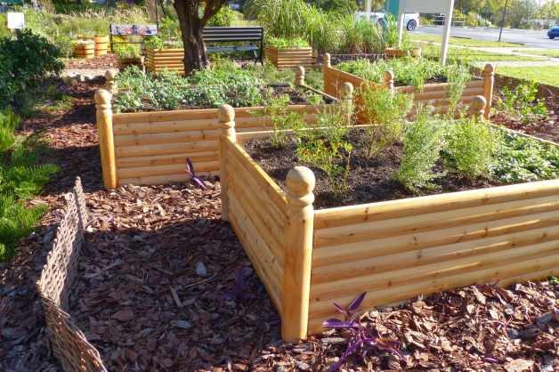 1000 Images About Veggie Garden On Pinterest 400 x 300