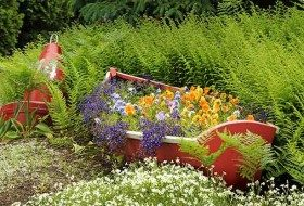 5 Creative Ideas for Raised Garden Beds
