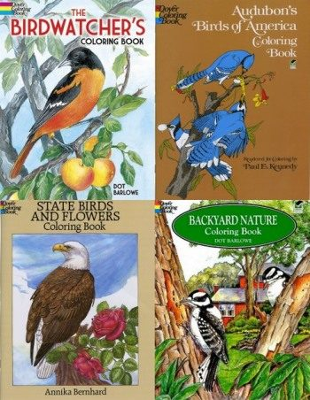 Rainy Day Birding Activities For Kids Coloring Books