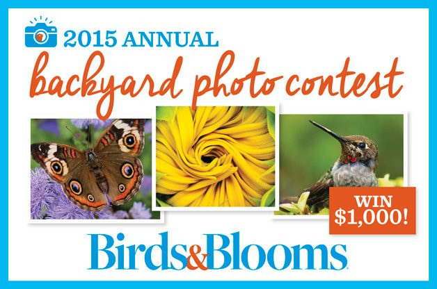 ... Photo Contest (#144) Official Rules (Entry Closed) - Birds and Blooms