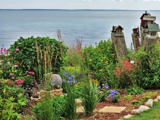 Lakefront garden birds and blooms for Lakefront landscaping photos