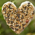 Recycled Paper Heart DIY Bird Feeder