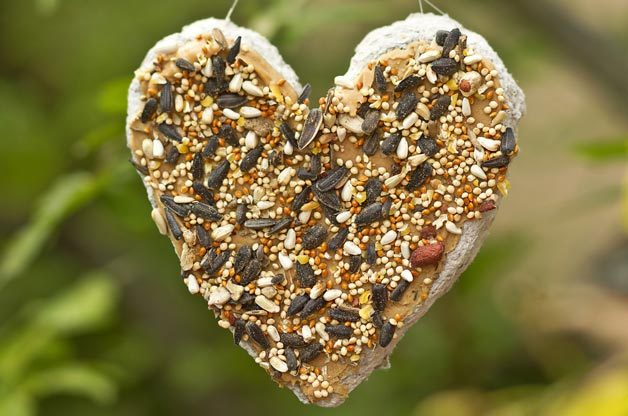 Recycled Paper Heart DIY Bird Feeder | Birds & Blooms Magazine