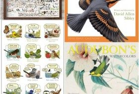 Bird Gifts for the Holidays 2015