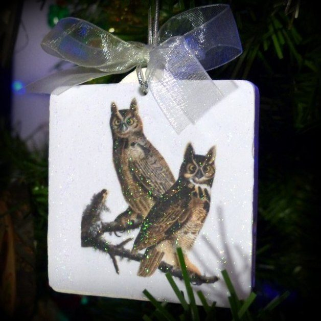 Easy Audubon DIY Bird Ornament