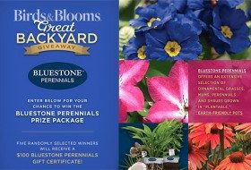 Bluestone Perennials giveaway