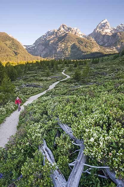 Grand Teton National Park has more than 200 miles of hiking trails.