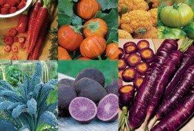 Rainbow Garden of Unusual Vegetables Featured