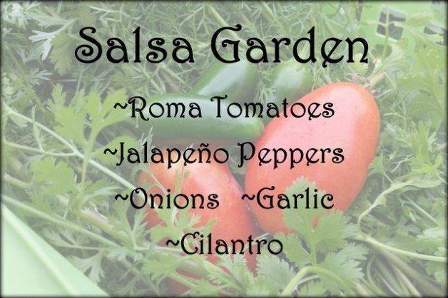 Themed Vegetable Gardens Salsa