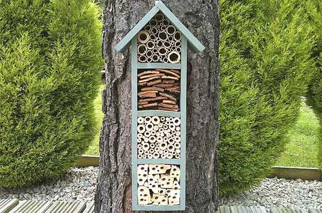 A bee hotel provides shelter for bees to raise their young.