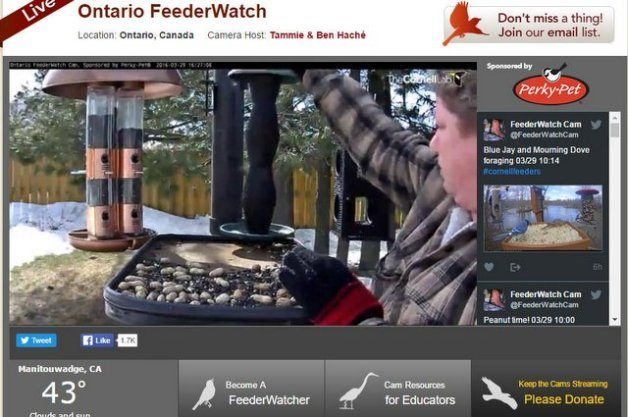 webcam live video kornell