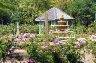 Rose Garden Photos from Leu Gardens