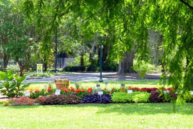 Leu Gardens Test Gardens