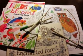 Bird and Flower Coloring Books for Adults